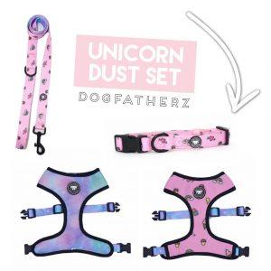 DogFatherz Collar Lead Harness Set